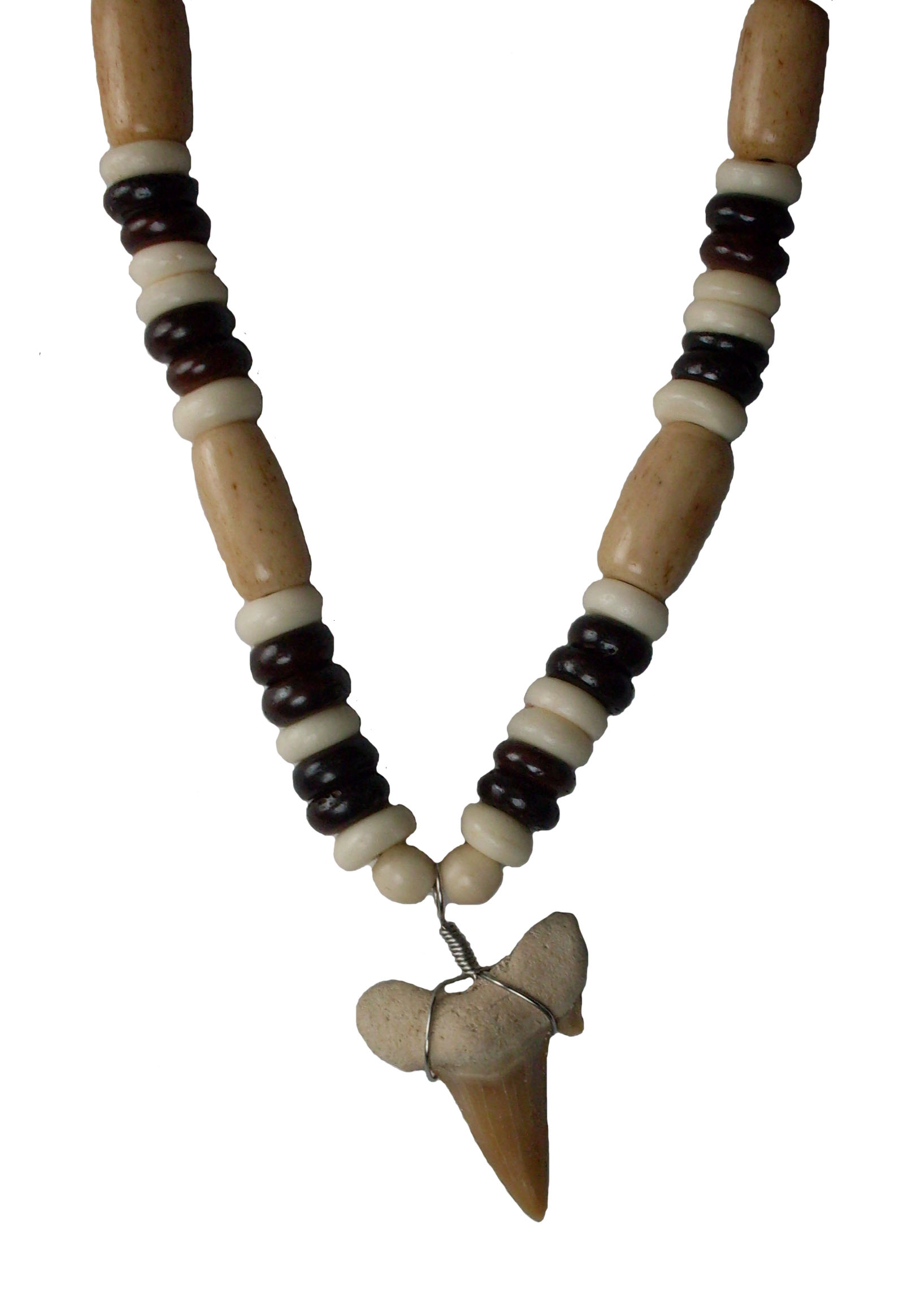 Shark Tooth Necklace #20