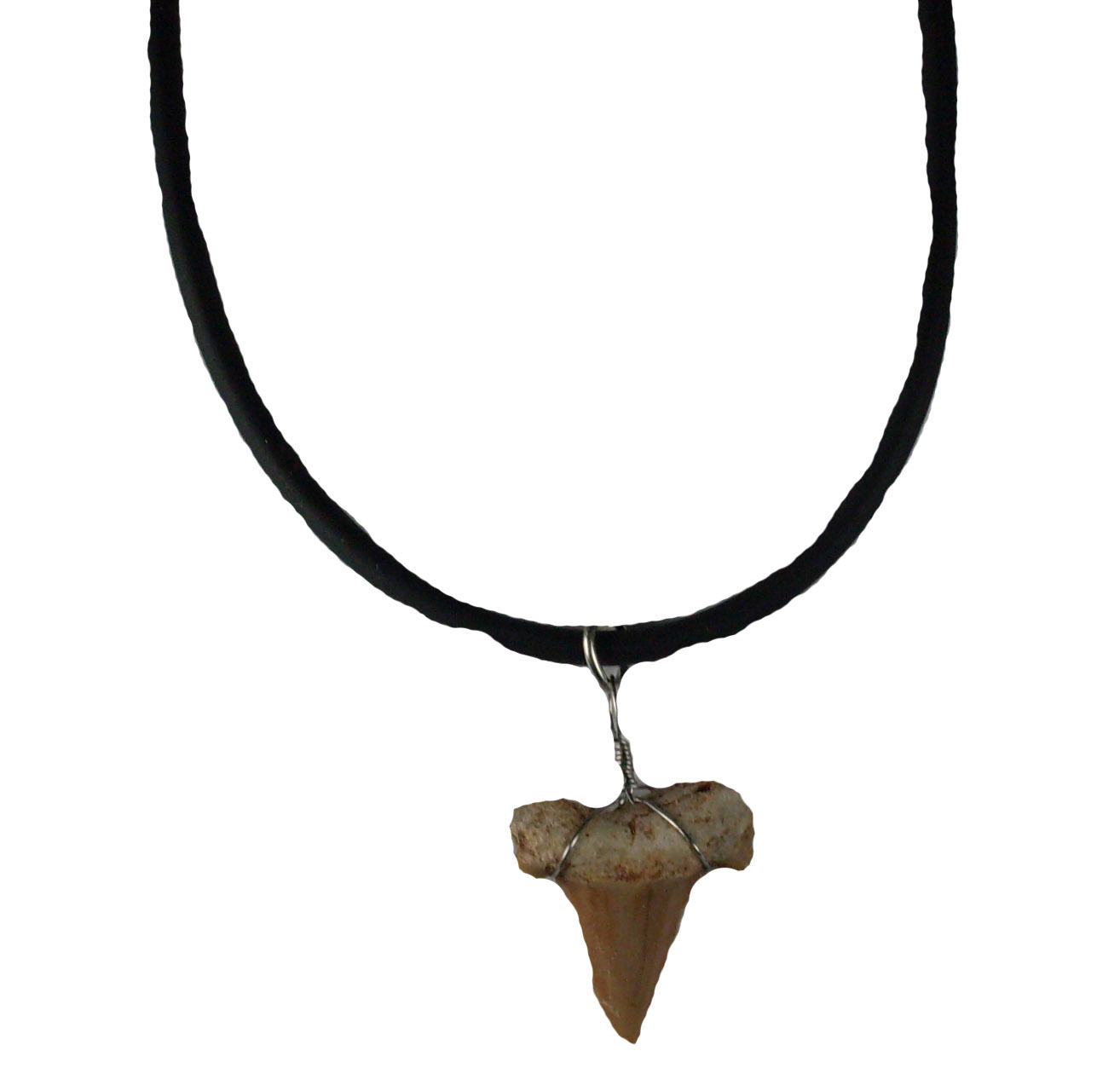 Shark Tooth Necklace #32