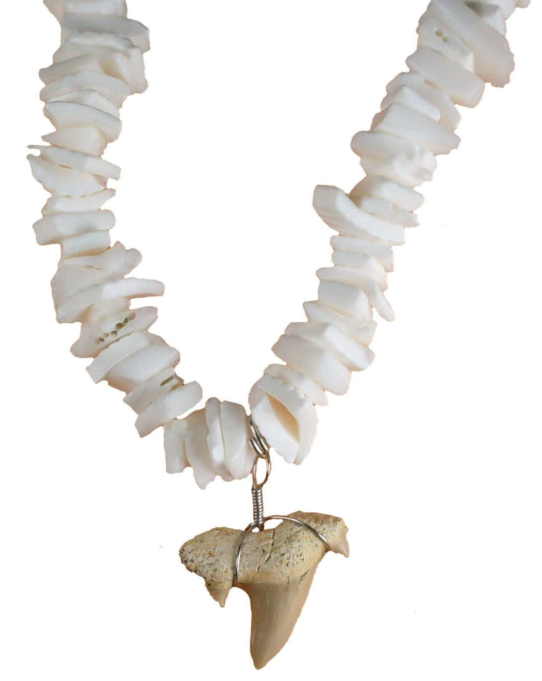Shark Tooth Necklace #4