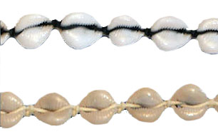 Cowrie Shell Anklet Plain